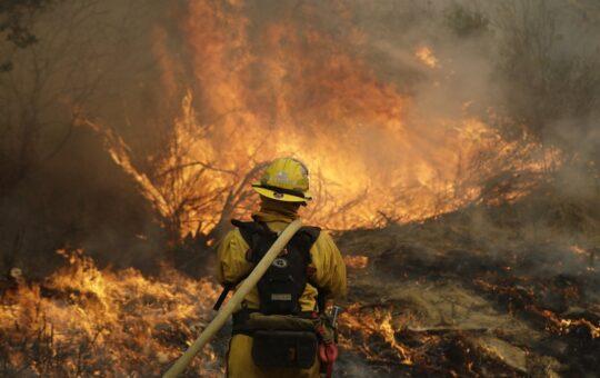 Forest Fire Statistics